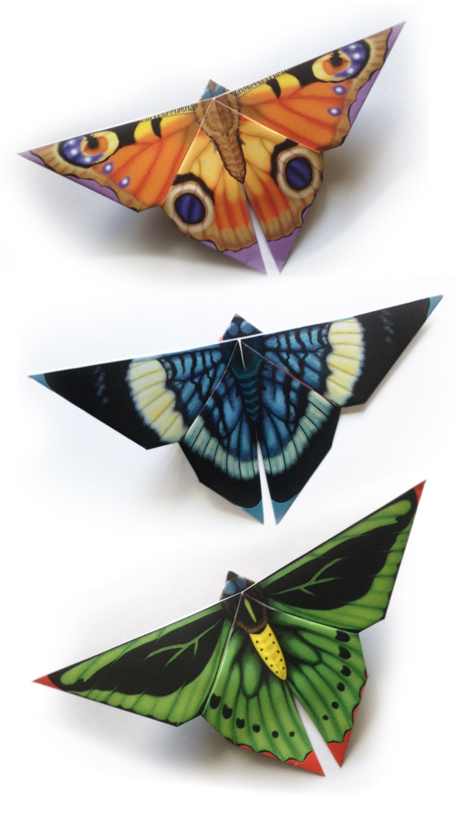 Easy Butterfly Origami Written And Illustrated By Tammy Yee Dover Publications ISBN 13 978 0486784571